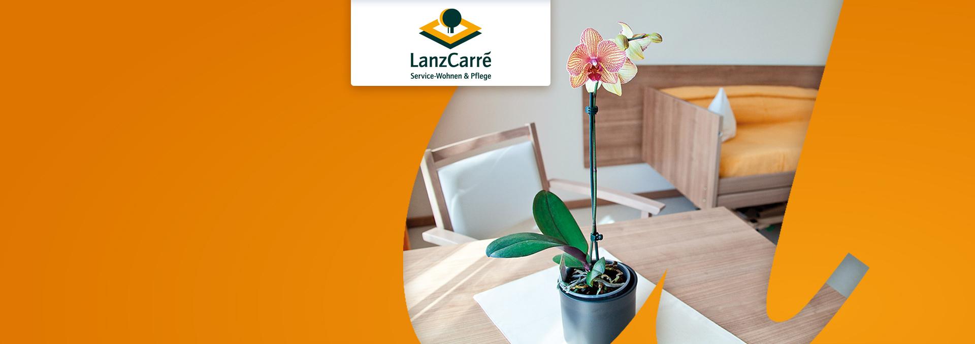 Service-Wohnen und Pflege LanzCarré Pflegezimmer, eine Pflanze steht auf einer kleinen Decke auf einem Holztisch