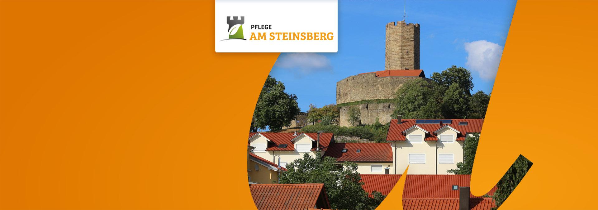 Header AM STEINSBERG Sinsheim-Weiler